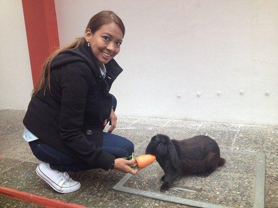 Hostal de La Rabida: Con el precioso Brownie, el conejito del hotel