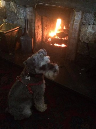 Newlands Valley, UK: 3 real fires at The Swinside Inn