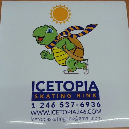 Icetopia Skating Rink