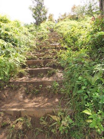 Kuliouou Ridge Hike : photo7.jpg