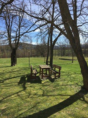 Agriturismo Montefiore: photo8.jpg