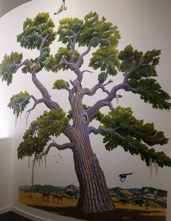 Solvang, CA: This hand-painted wall mural depicts our local oak habitats