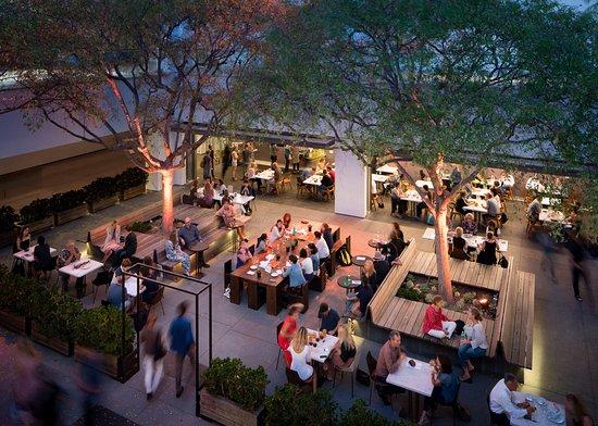 Hammer Museum courtyard at night