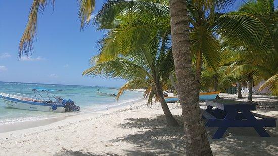 Bayahibe, Den dominikanske republikk: 20170314_134827_large.jpg