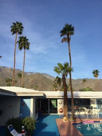 Palm Springs Rendezvous: photo1.jpg