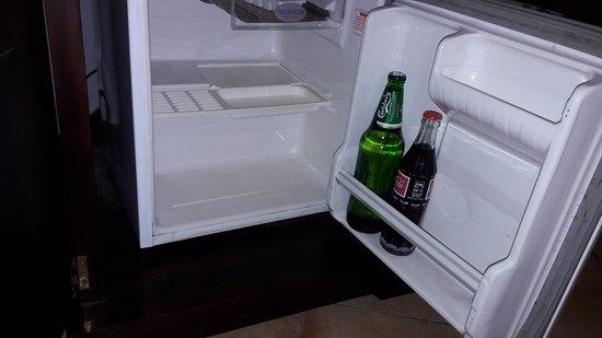 โรงแรมทรีออฟไลฟ์: Broken Refrigerator