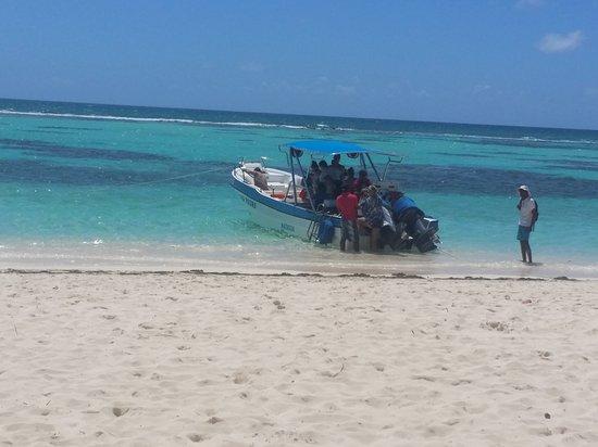 Bayahibe, Den dominikanske republikk: 20170314_122030_large.jpg