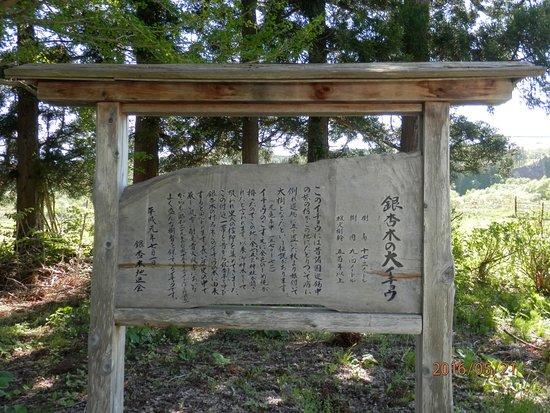 Ginnanboku no Oicho