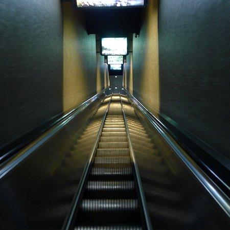 Tennessee Aquarium: Elevator to top of tanks