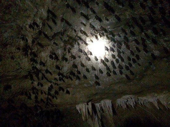 Kilim Karst Geoforest Park: photo5.jpg