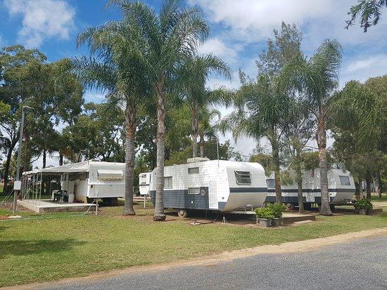 วอร์วิก, ออสเตรเลีย: Overnight vans