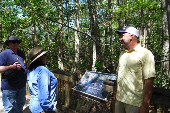 Davie, FL: Guide explaining cypress strand habitat
