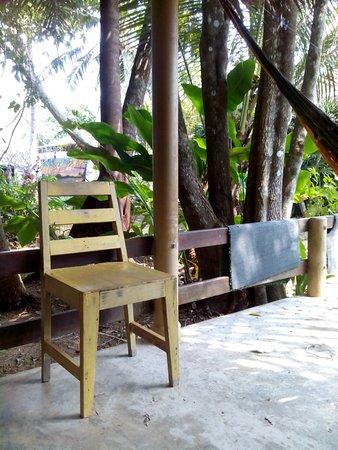 Monkey Island Resort Photo