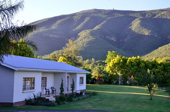 Somerset East, África do Sul: Views  - garden & mountain