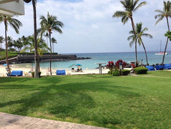 View From The Napua Restaurant At Mauna Lani Beach Club Saw Breaching Whales Off