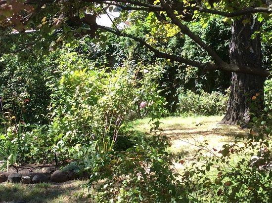 Markree House Museum & Garden: photo9.jpg