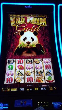 Wheeling Island Hotel Casino Racetrack foto