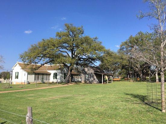 Johnson City, TX: photo6.jpg
