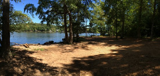Eatonton, GA: View from the beach...