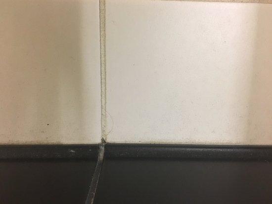 Lake City, FL: Bathroom tile