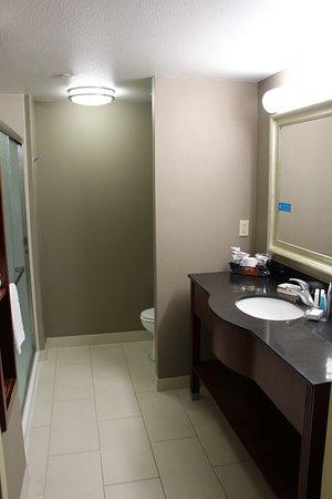 Hampton Inn Visalia : Badezimmer