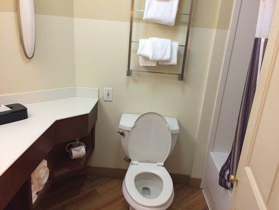 La Quinta Inn & Suites New Orleans Downtown: The bathroom