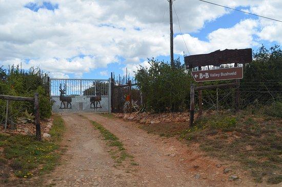 Greater Addo, Sudáfrica: Einfahrt zur Lodge