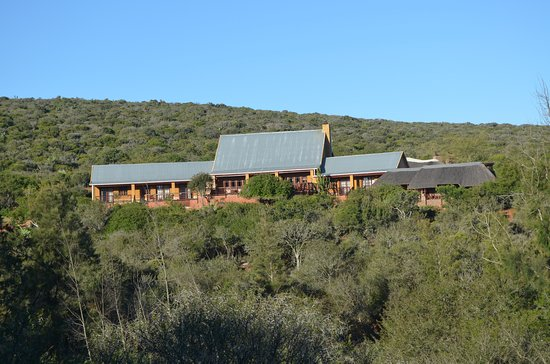 Greater Addo, Sudáfrica: Die Lodge vom Tal aus, wo man wandern kann.
