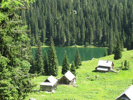 Bohinjsko Jezero, سلوفينيا: Koča na Planini pri Jezeru