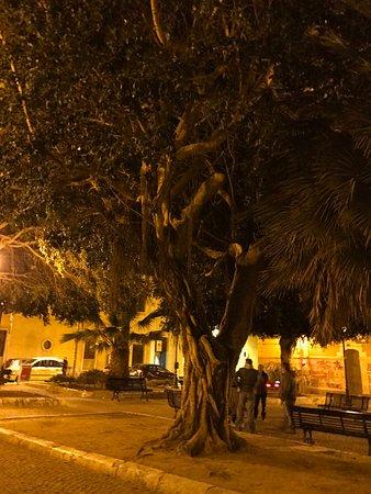 Photo of Restaurant Bar Florio at Via San Domenico 90, Cagliari 09127, Italy