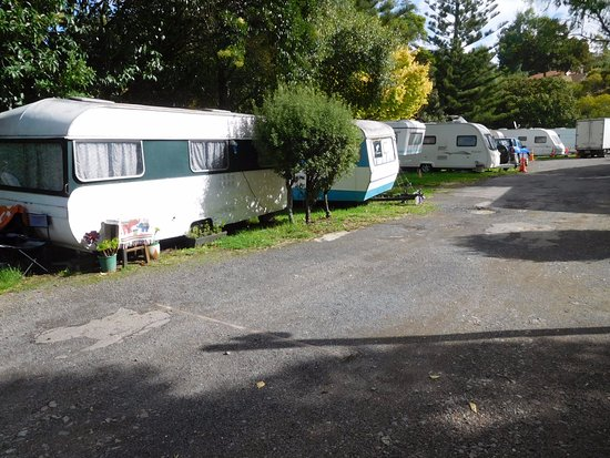 Remuera Motor Lodge & Inner City Camping Ground Resmi