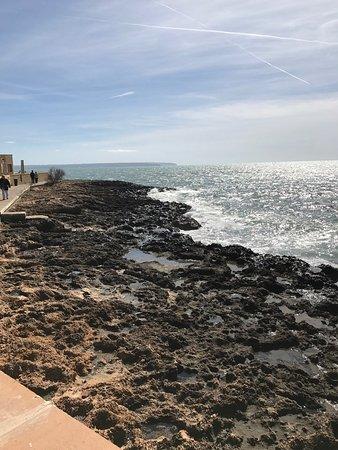 Playa de Palma, El Arenal (Platja de Palma, s'Arenal): photo8.jpg