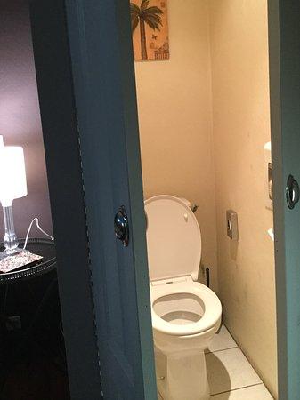 Hotel Les Pasteliers : Toilet in corner of room