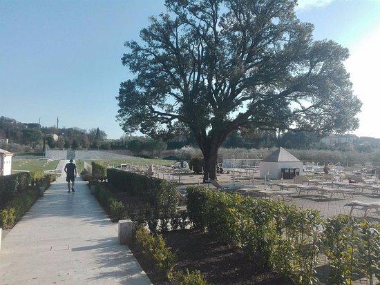 Terme Antica Querciolaia : parco