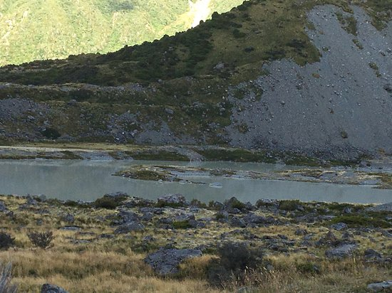 Aoraki Mount Cook National Park (Te Wahipounamu), New Zealand: 最初は雲に覆われてましたが、途中かは晴れて気持ち良くトレッキング出来たのも私に配慮していただいたガイドさんや同行者のおかげです。