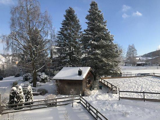 Garten Im Winter garten im winter picture of baeren das gaestehaus gais