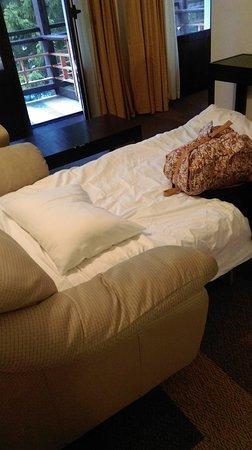 Ana Hotels Poiana: TA_IMG_20170318_155248_large.jpg