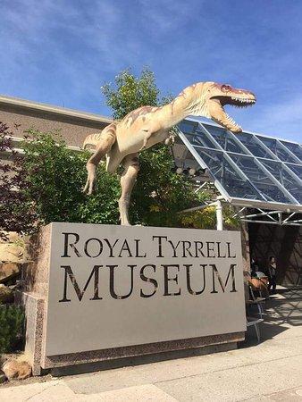 Museo Real de Tyrrell: photo1.jpg