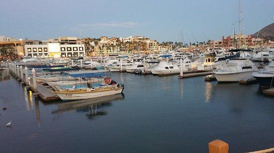 Lorenzillo's Restaurant Cabo San Lucas: Marina view at dusk