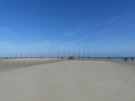 Vlieland Adası