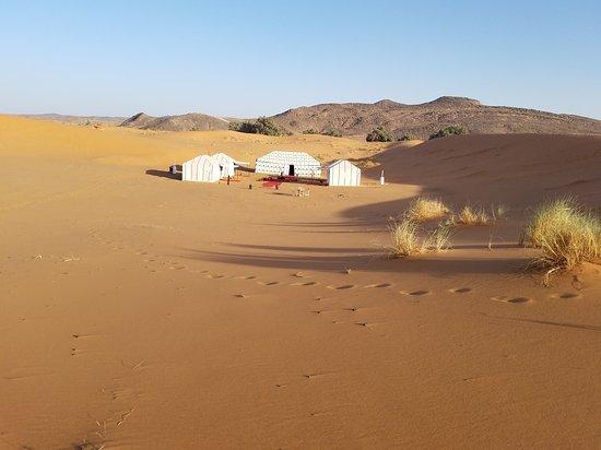 Marrakech Camel Trips - Day Trips : 20170314_170859_large.jpg