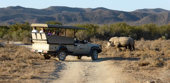 Sanbona Wildlife Reserve - Tilney Manor, Dwyka Tented Lodge, Gondwana Lodge : photo4.jpg