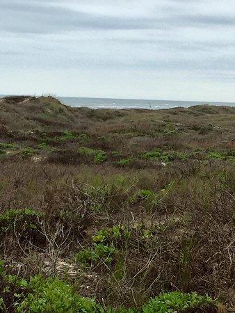 Padre Island National Seashore: photo4.jpg