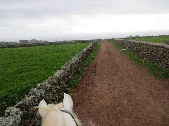 Basalto Horse Experience