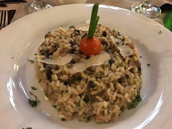 Razlog, บัลแกเรีย: mushroom risotto with parmesan