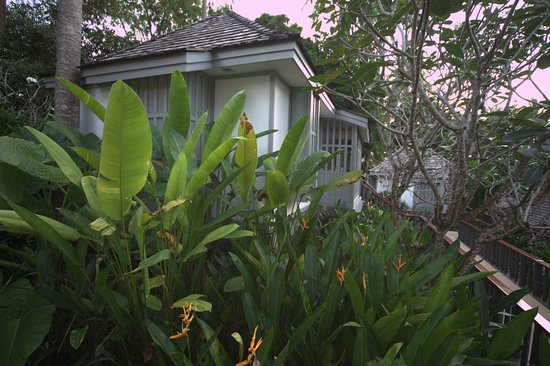 The Surin Phuket: our cottage