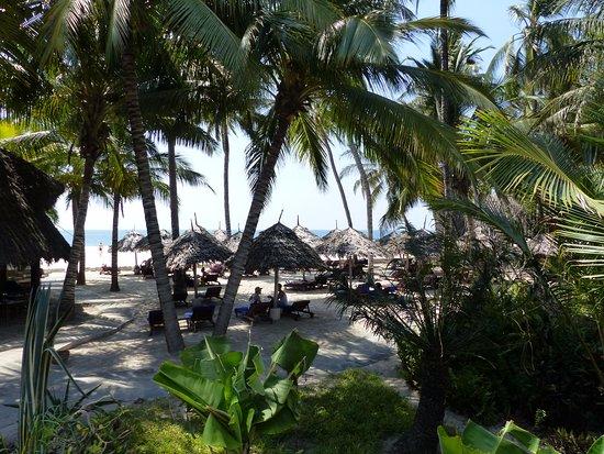 Trip Advisor Pinewood Beach Resort And Spa