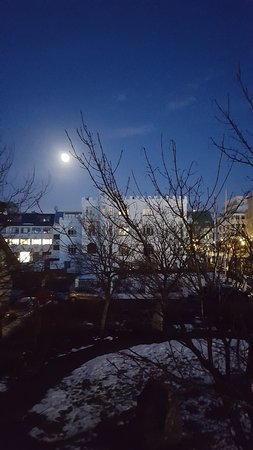Reykjavik Residence Suites: View from balcony.