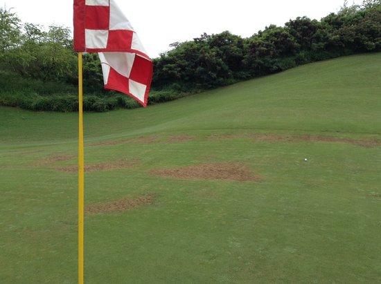 The Dunes at Maui Lani Golf Course: Same green