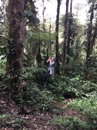 Sachatamia Lodge: Giant Swing!